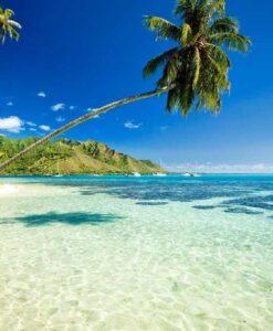 Fotomural Playa Cristalina