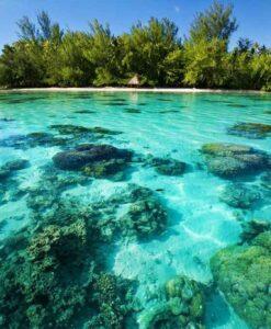 Fotomural Isla Playa