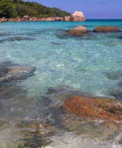 Fotomural Playa Rocas