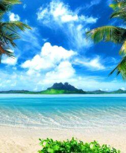 Fotomural Palmeras Playa2
