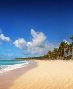 Fotomural Playa Palmera