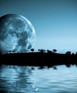 Fotomural Luna Isla