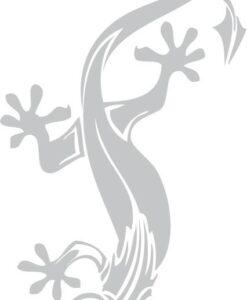 Vinilo Decorativo Salamandra