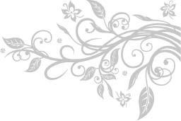 Vinilo Decorativo Conjunto Floral