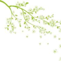 Vinilo Decorativo Rama Floral