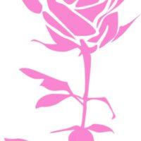Vinilo Decorativo Rosa