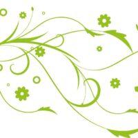 Vinilo decorativo Pajaros Flor