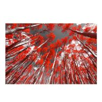Vinilo Bosque Rojo